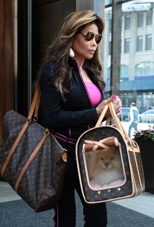 LaToya-Jackson-Louis-Vuitton-Dog-Carrier-4.jpg