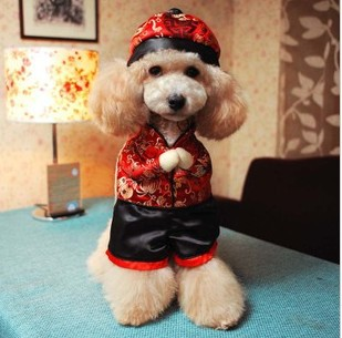 Pet-dog-clothes-of-Chinese-New-Year-teddy-bust-Chinese-style-costumes.jpg_640x640.jpg